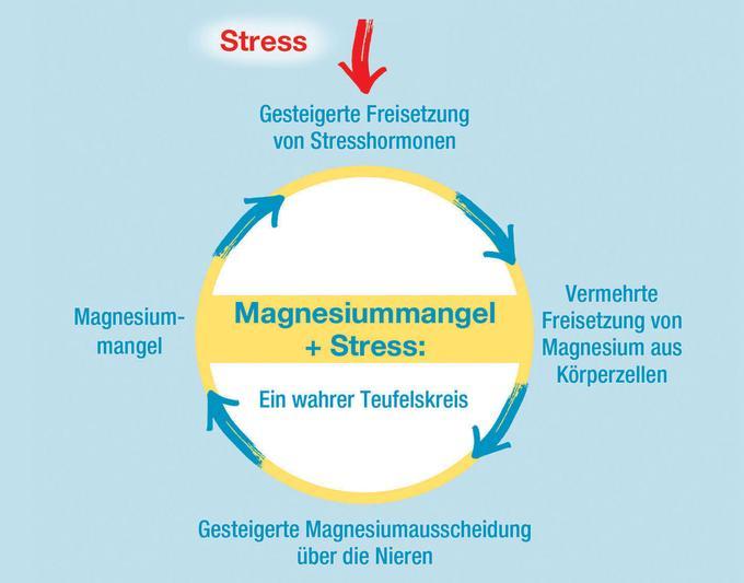 Kopfschmerzen Durch Magnesiummangel
